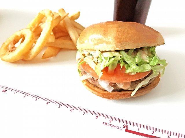 体脂肪を落とすための食事とは? 体脂肪率の高さに悩まされているという方は多いのではないでしょうか。 体脂肪率が高いことで及ぶ悪影響は、見た目の悪さだけではありません。 血中の悪玉コレステロールや中性脂肪の数値や血糖値が高くなることで、高脂血症や動脈硬化や糖尿病やメタボリックシンドロームなどの生活習慣病を引き起こすリスクが高まるという悪影響も及びます。